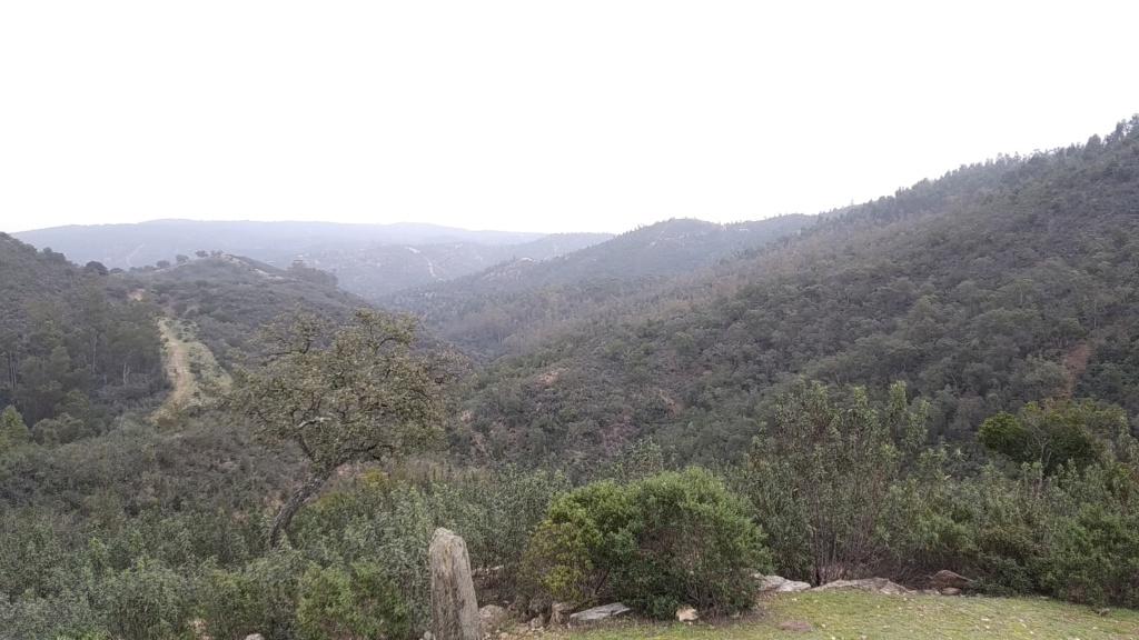 SABADO 08/02/2020 Valverde del Camino - DOLMENES - Pozuelo- Valverde (46 Km y 700m.) Img_2022