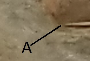 50 céntimos 1880. Alfonso XII. Con doble error? - Página 2 Img_2031