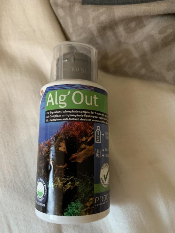 Algues Image10