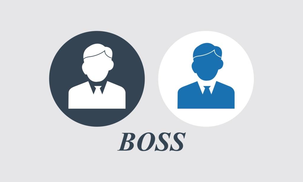 Руководитель в организации Boss-511