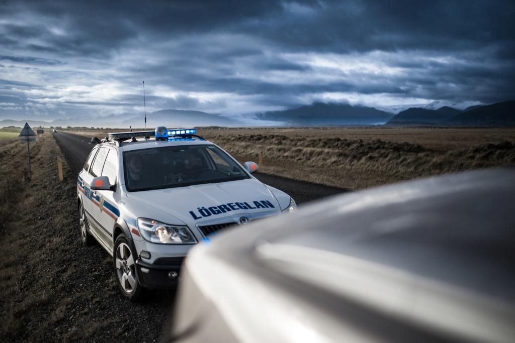Путь полицейского Car-6310