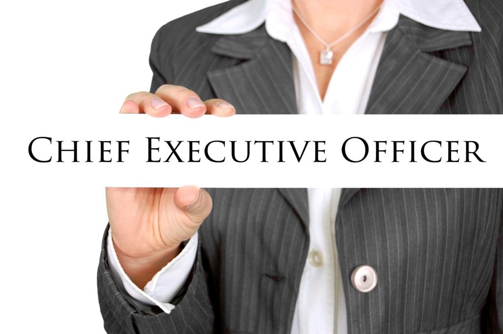 Путь CEO (Chief Executive Officer) D0fbff10