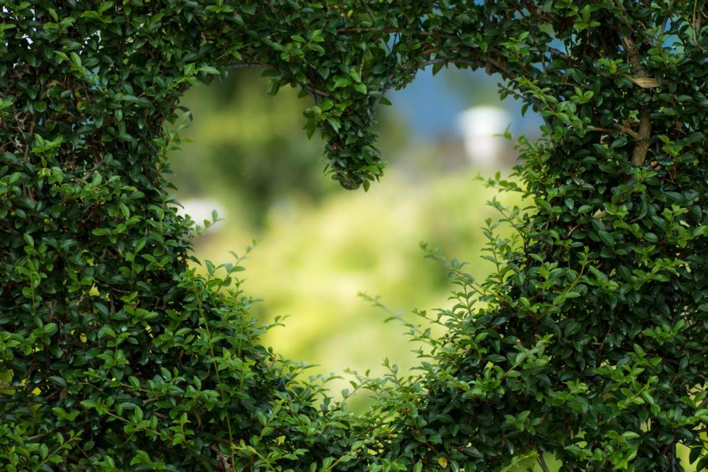 Жизненная мотивация (мышление на миллион) Heart-11