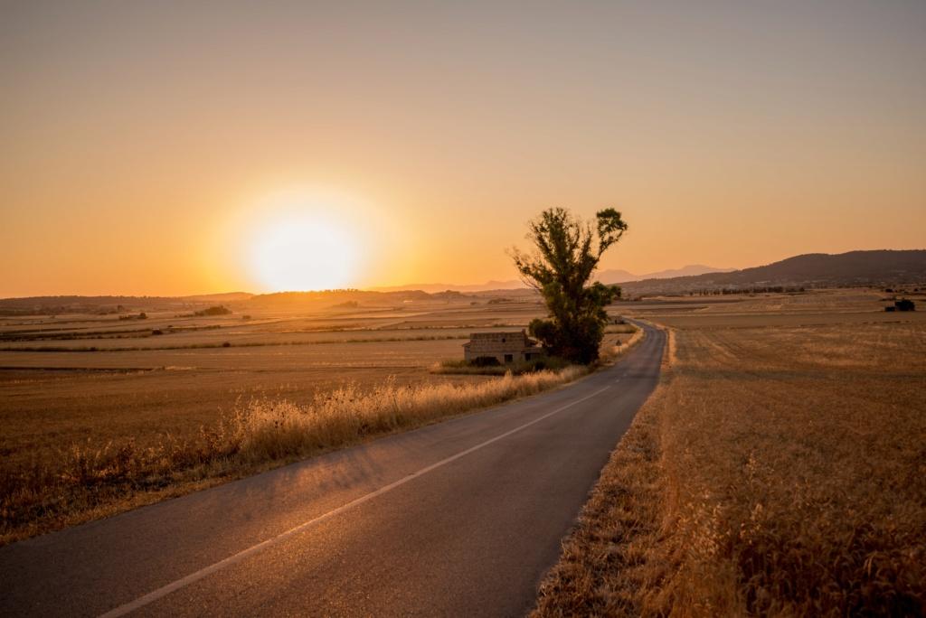 Жизненная мотивация (мышление на миллион) Rural-10