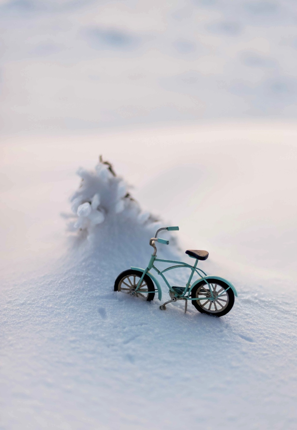 Путь к заветной мечте Snow-410