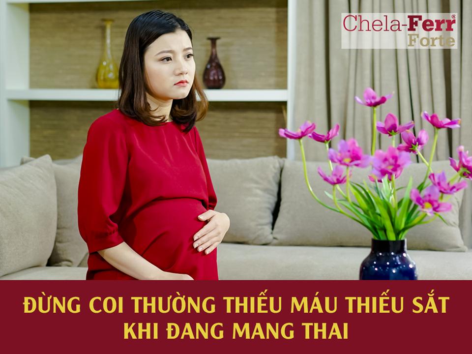 Bí quyết chọn thuốc bổ máu tốt nhất - Mẹ bầu không nên bỏ qua! Dung-c11