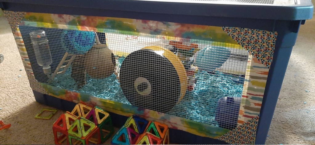 Large multilevel bin cage 20200514