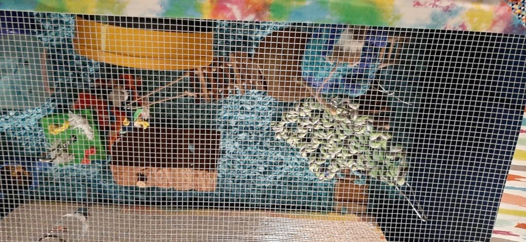 Large multilevel bin cage 20200515