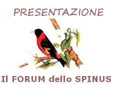 Forum dello Spinus Forum_60