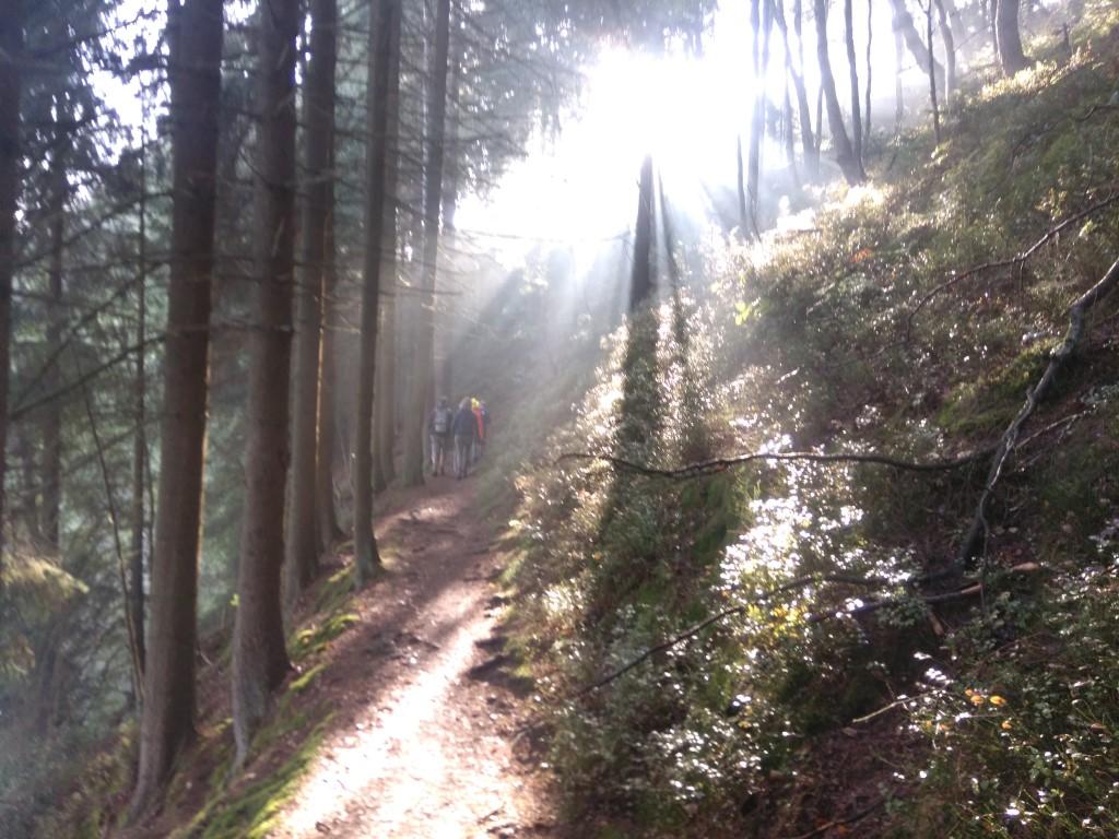 100 Km Kettenis - Bütgenbach 110