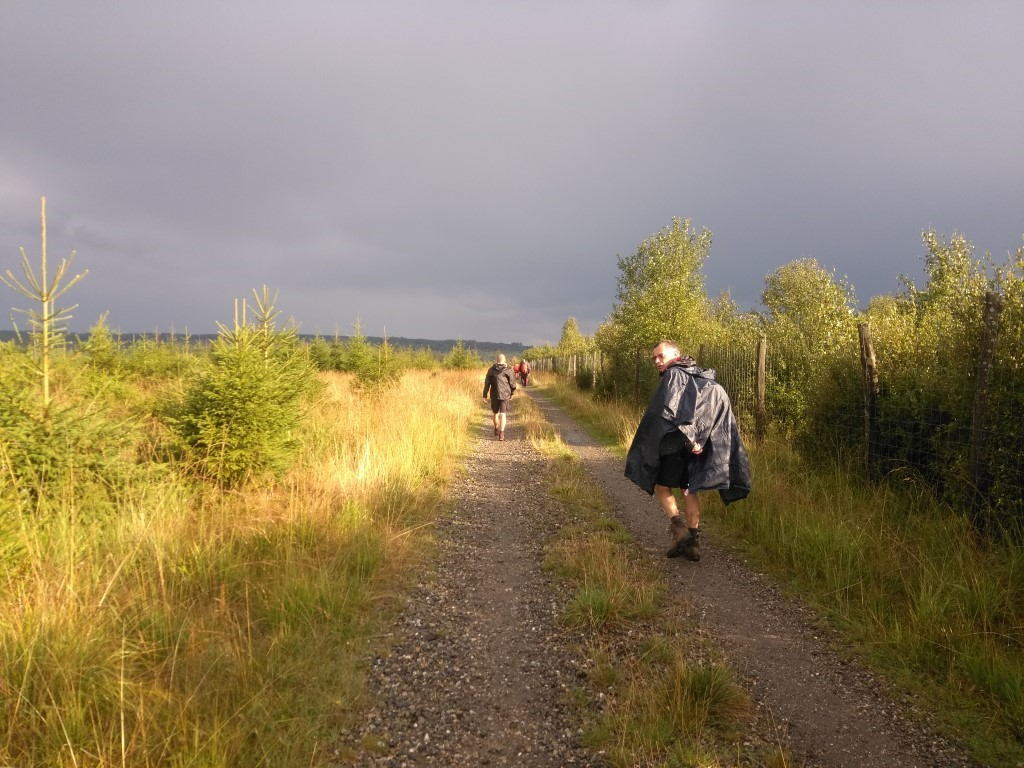 100 Km Kettenis - Bütgenbach 1_410