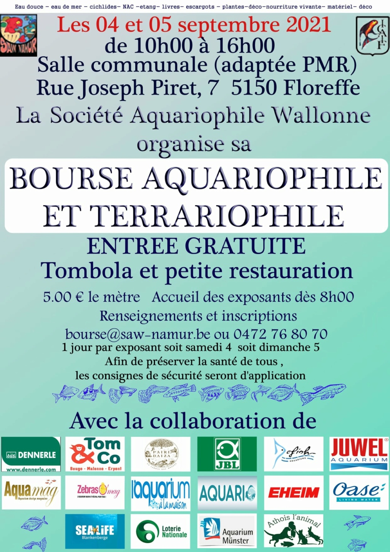 bourses et conférence en Belgique  24073710