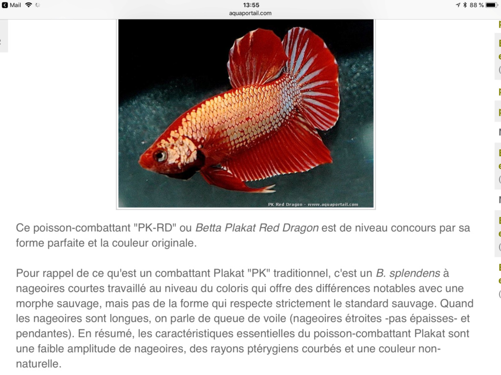 Mes  5 différents bacs - Page 3 3ffeec10