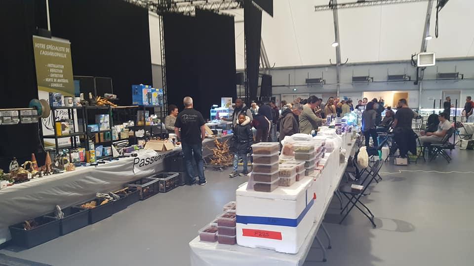 SALON/BOURSE AQUARIOPHILIE AVOBACS d'Argenteuil le 30 Novembre 2019 77430610