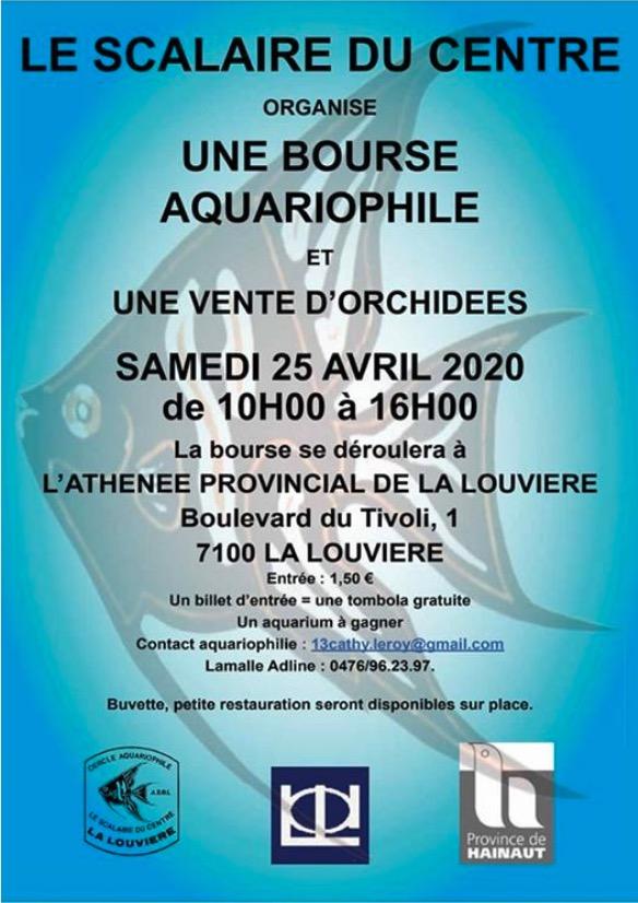 Bourse aquariophilie à La Louviere ( Belgique) Capt1381