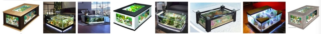 Projet aquarium amazonien - Page 2 Captu134