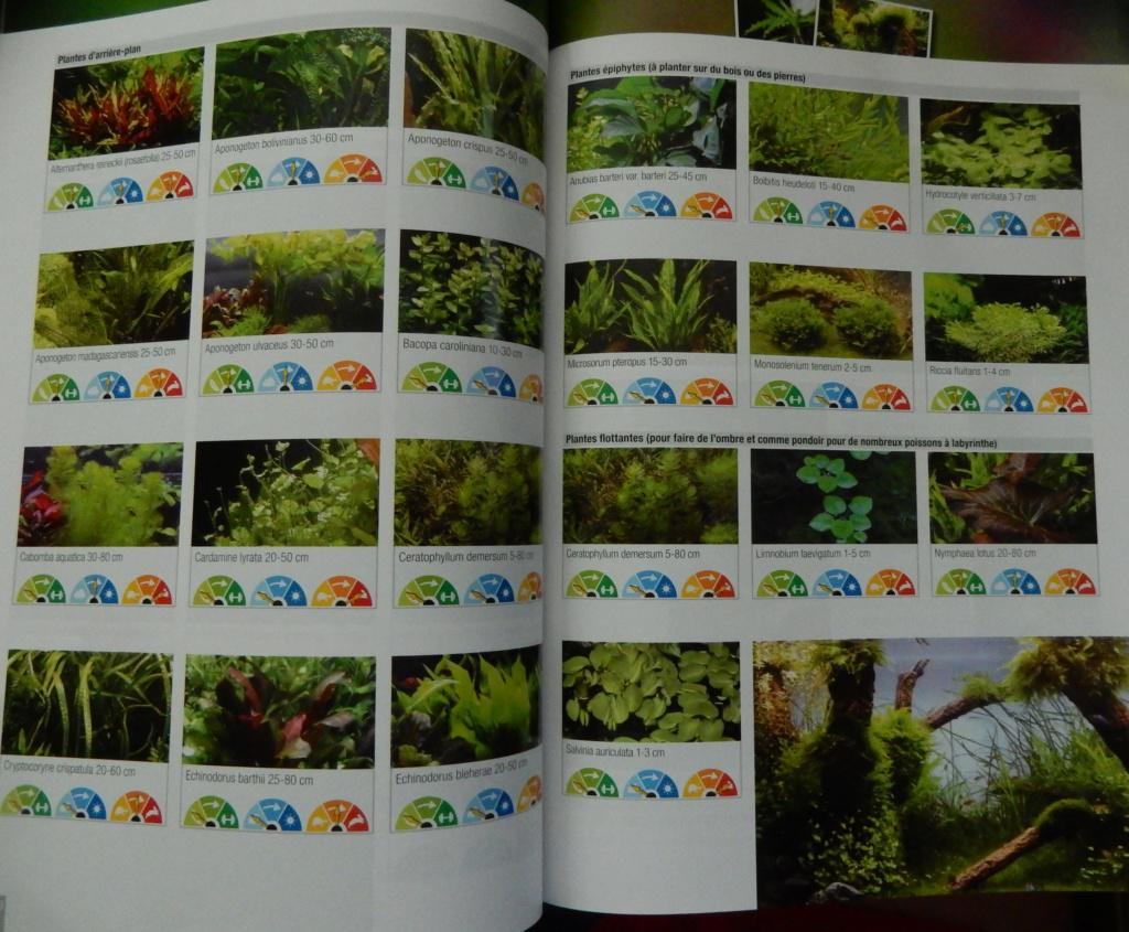 Manuel Aquarium de JBL  Dscn2824