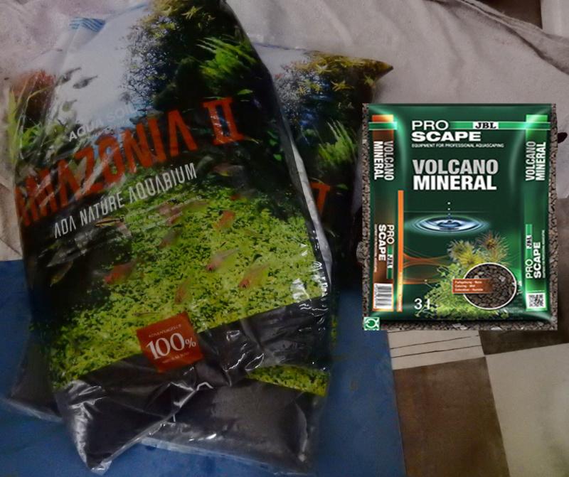 Réfection de mon bac Amazonien  Dscn4318