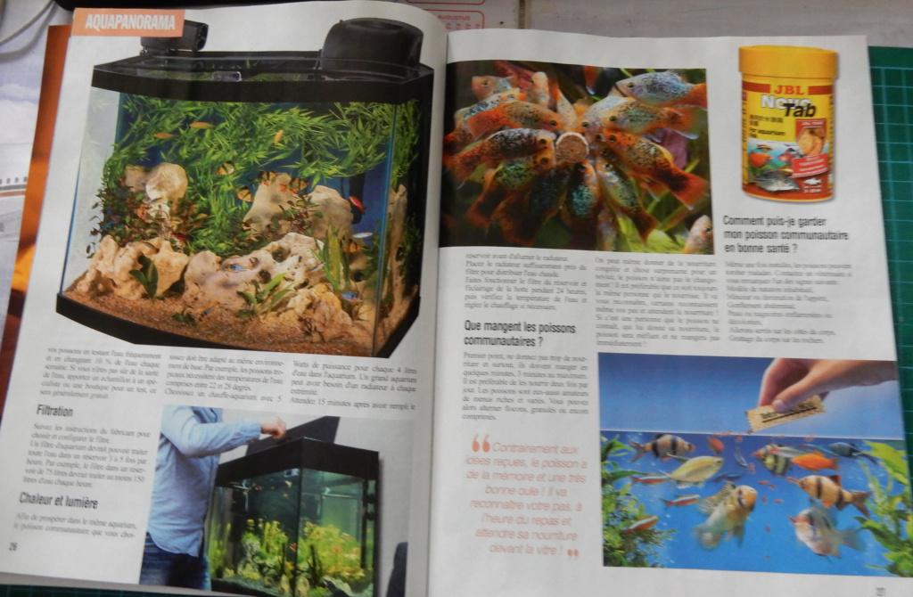 Nouveau magazine: Aquarium magazine Dscn6022