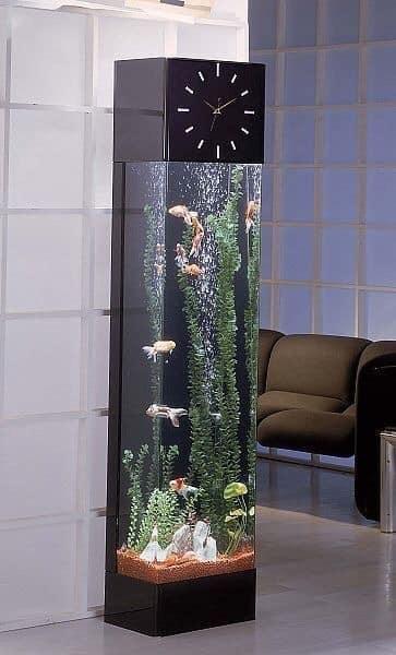 Divers créations d'aquarium Img_1311