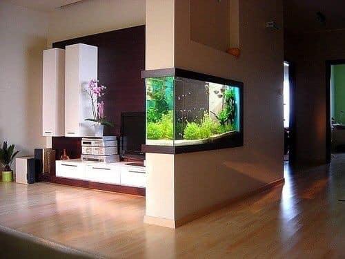 Divers créations d'aquarium Img_1312