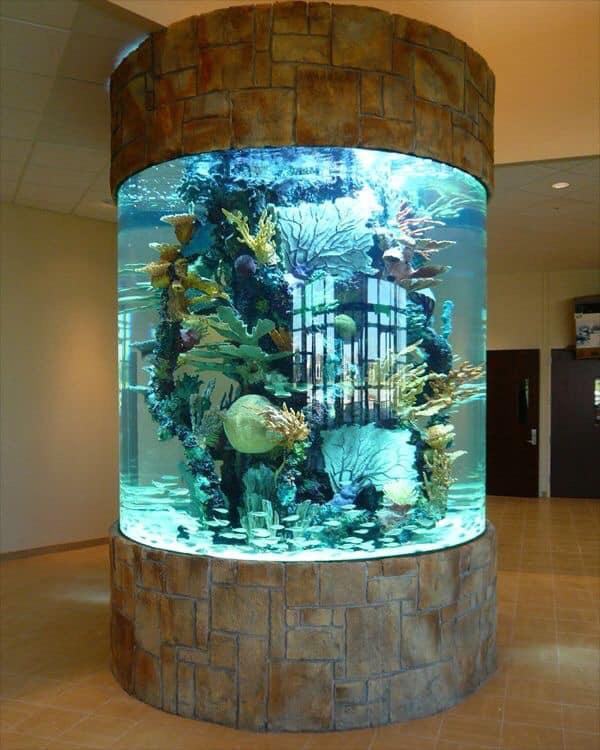 Divers créations d'aquarium Img_1313