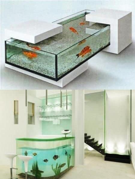 Divers créations d'aquarium Img_1317