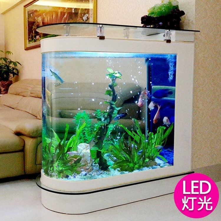 Divers créations d'aquarium Img_1325