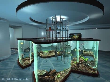 Divers créations d'aquarium Img_1327