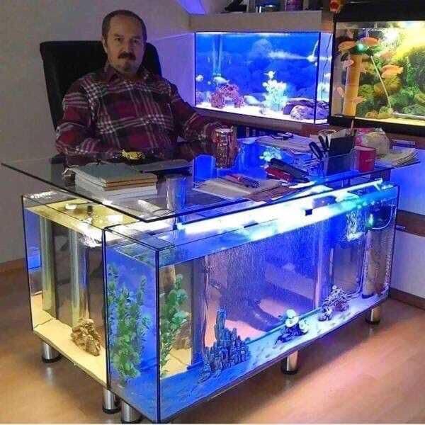 Divers créations d'aquarium Img_1329