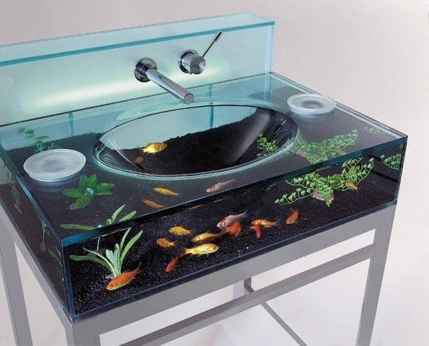 Divers créations d'aquarium Img_1330