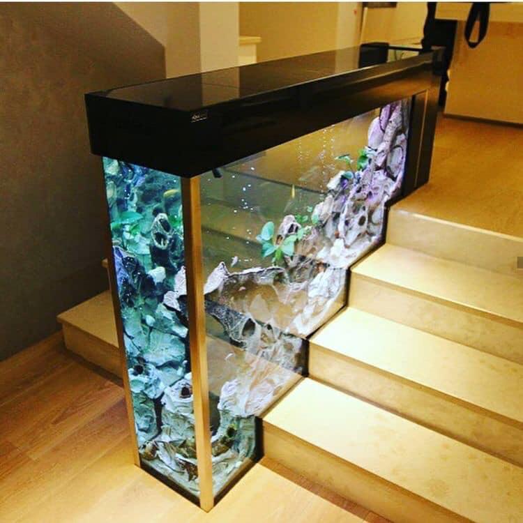 Divers créations d'aquarium Img_1337