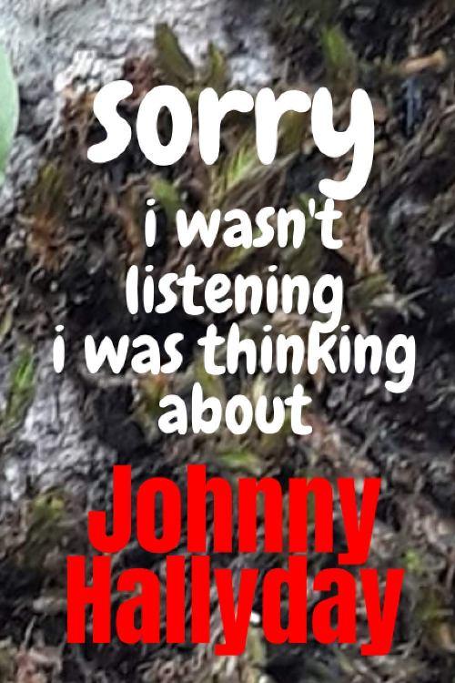 Les Livres sur Johnny - Page 7 71gdkn11