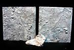 """[MATERCLASS] """"On l appelle Trinita """" 54 mm 2008 Réf MCFS 4021 W9311"""