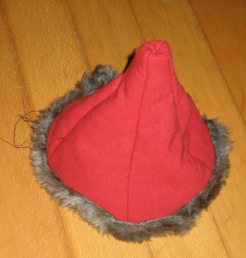 mon bonnet viking Gn_15010