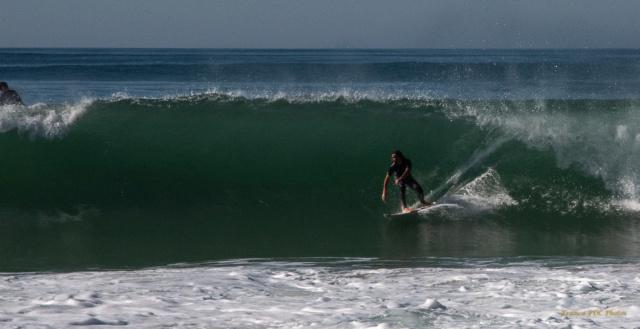 Photos d'automne et surf  Dsc_7915