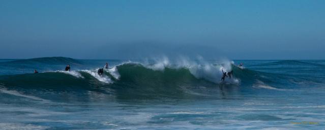Photos d'automne et surf  Dsc_7916