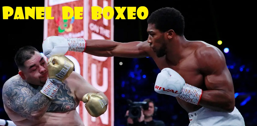 Lo Mejor del Boxeo en Español!