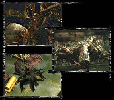 Resident Evil 0 (Gamecube ) Reine_10