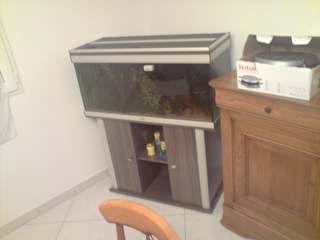 Aquarium 180L P2811011