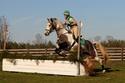 CARAÏBE  DREAM HORSE Gris1010