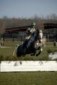 CARAÏBE  DREAM HORSE Gris8110