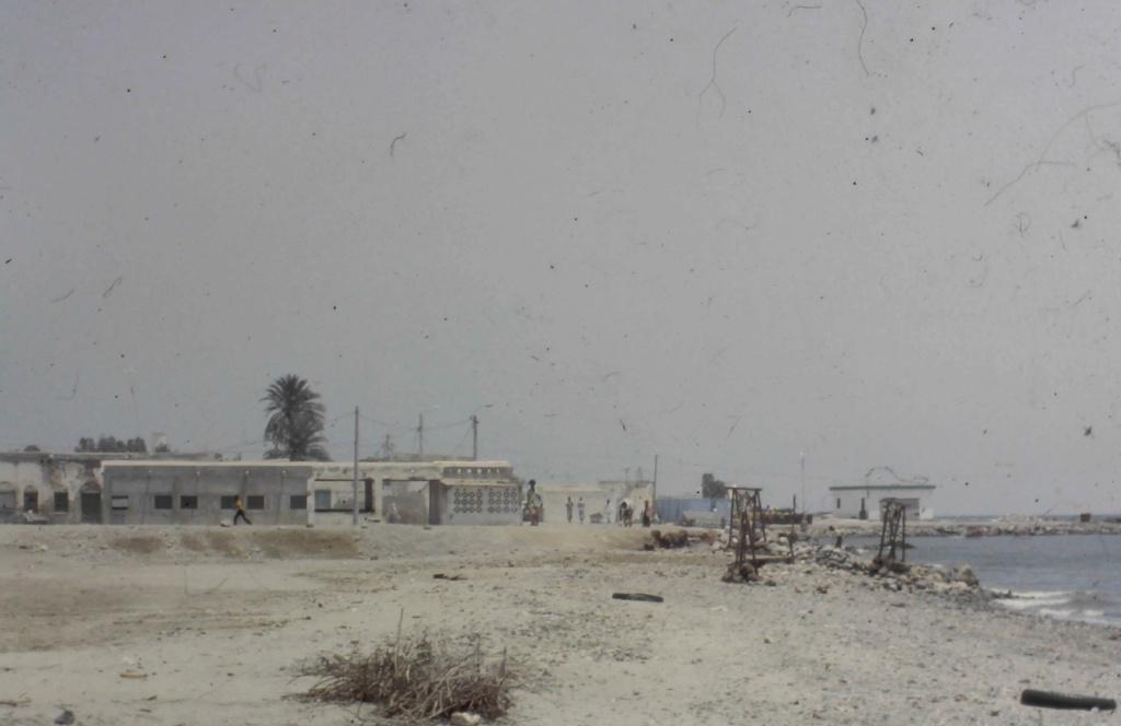 [Campagne] DJIBOUTI - TOME 1 - Page 26 20200615