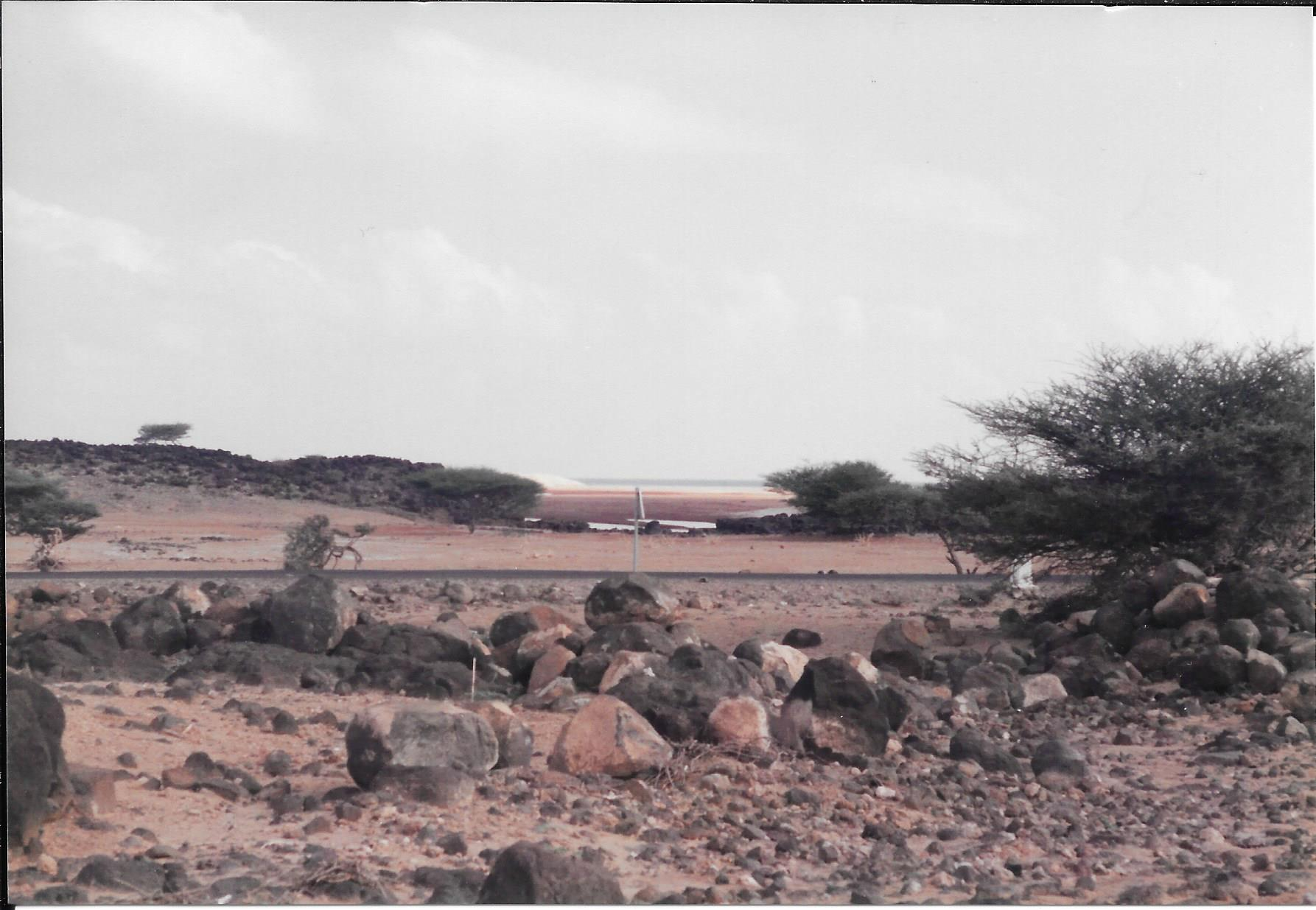 [Campagne] DJIBOUTI - TOME 1 - Page 22 312