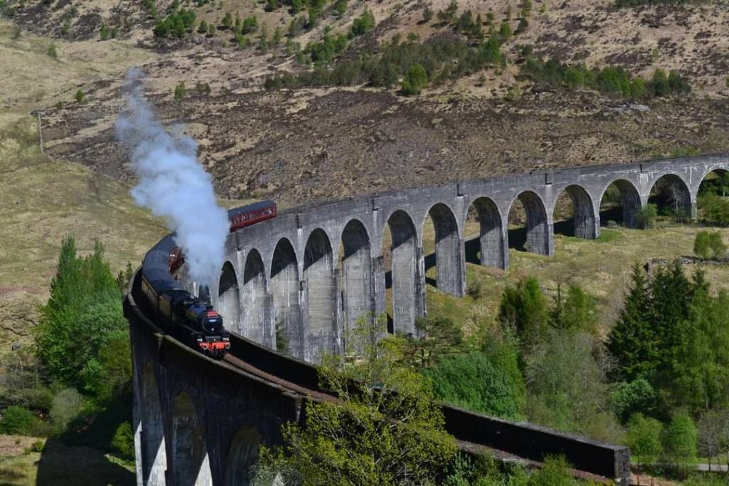 Tchou, tchou, départ du Hogwarts Express! Fb_img11