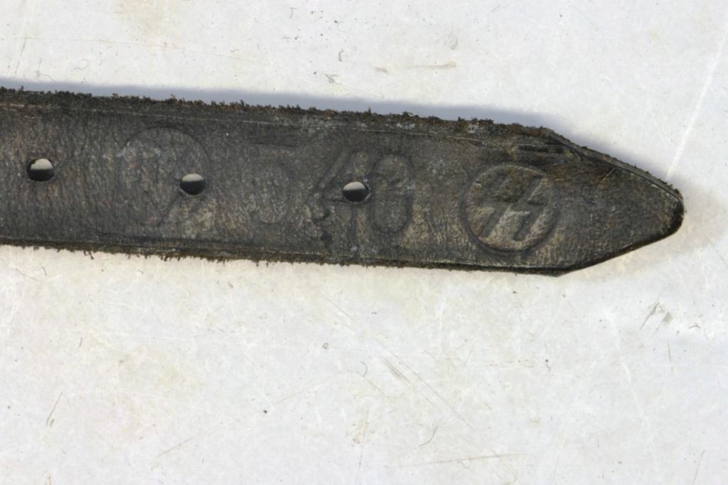 Casque M40 insigne SS avec photos supplémentaires Dsc_0170