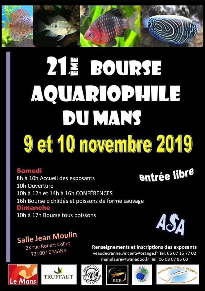 Bourse du Mans les 9 et 10 novembre 2019 Fb_img10