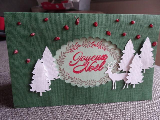 Noël 2018, cartes reçues hors ronde  - Page 2 Dsc03044