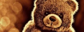 Attracta ou l'oursonne empailleuse (fiche en cours) Bear-110