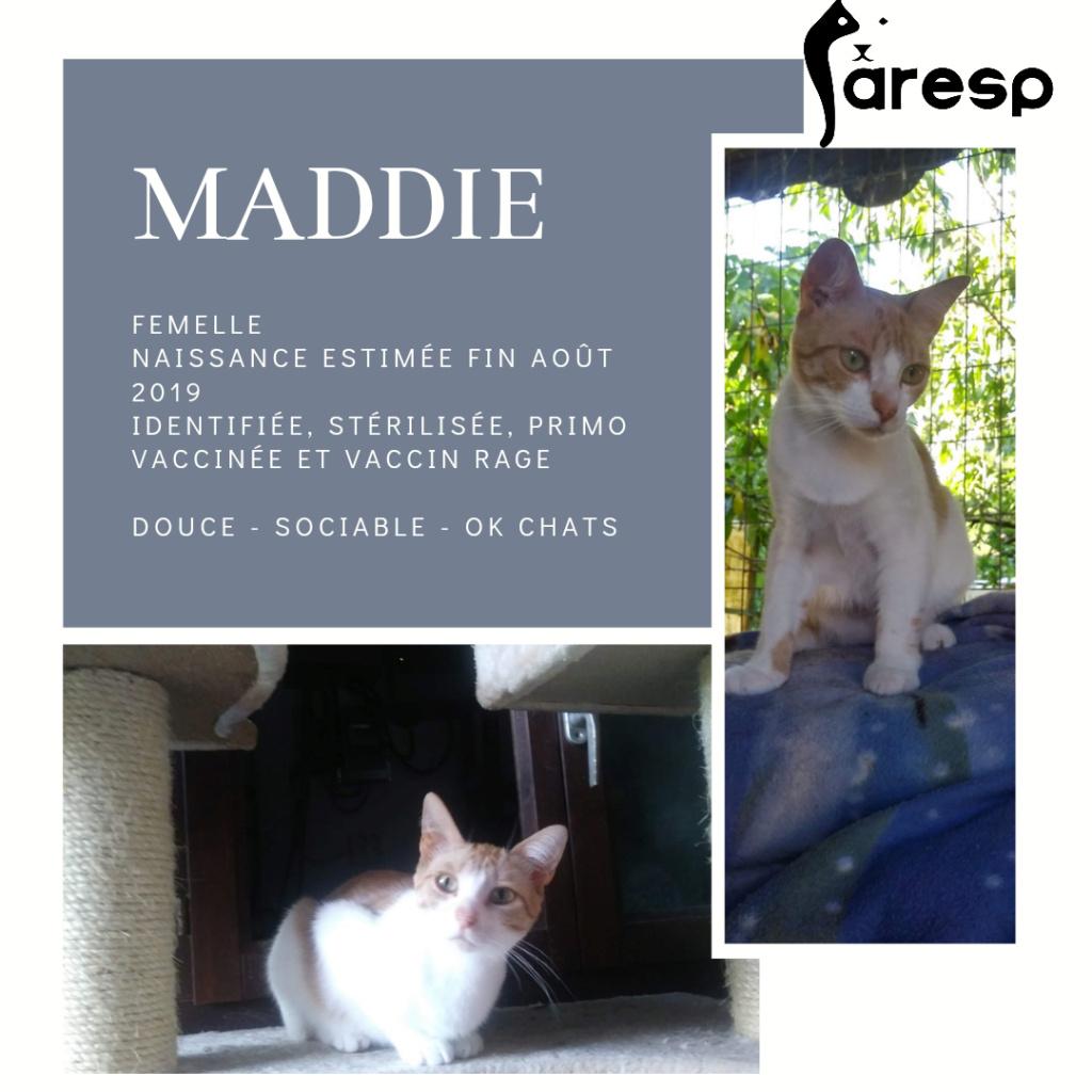 MADDIE- ROUSSE ET BLANCHE (BQG)  20201111